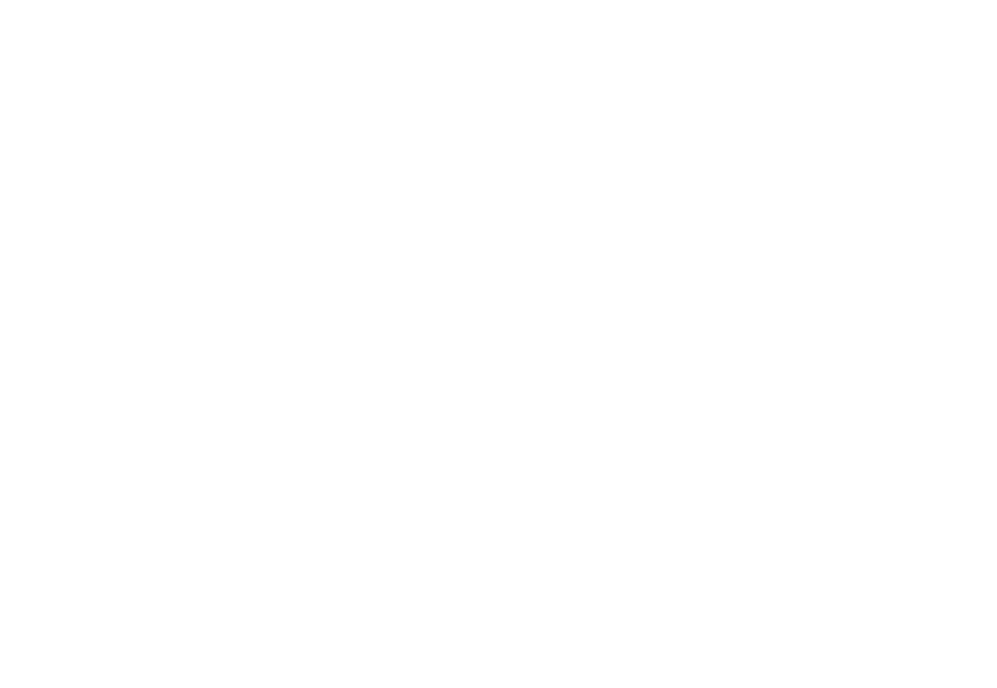 Budget Thuis